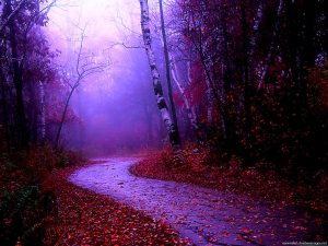Misty Nature PowerPoint Background
