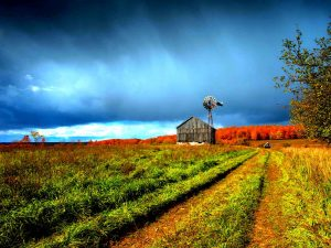 Beautiful Farm Scenery Powerpoint Background