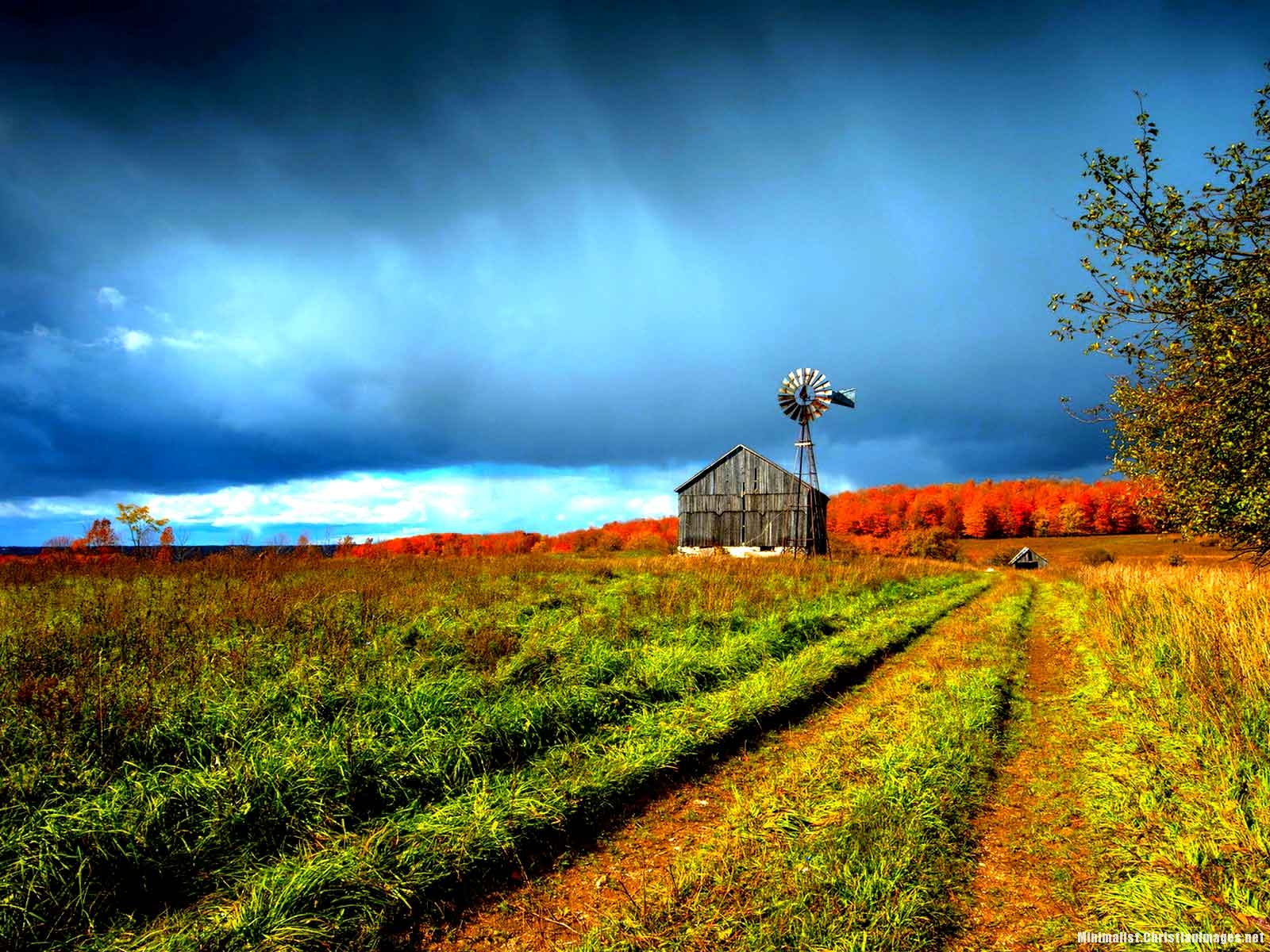 Beautiful Farm Scenery Powerpoint Background