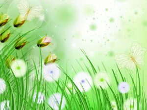 Butterflies And The Grass Background
